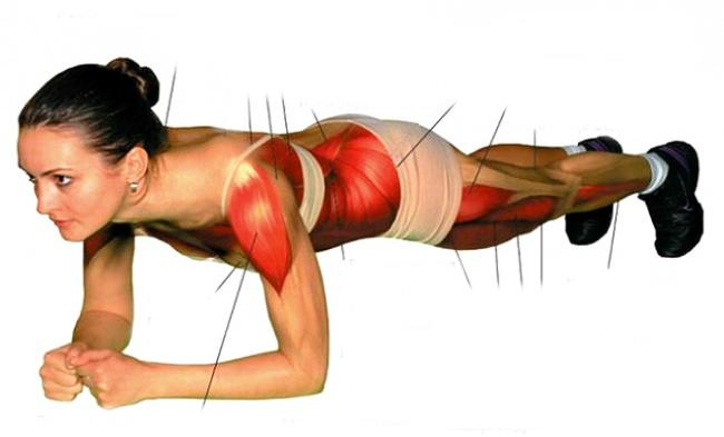 plank lola