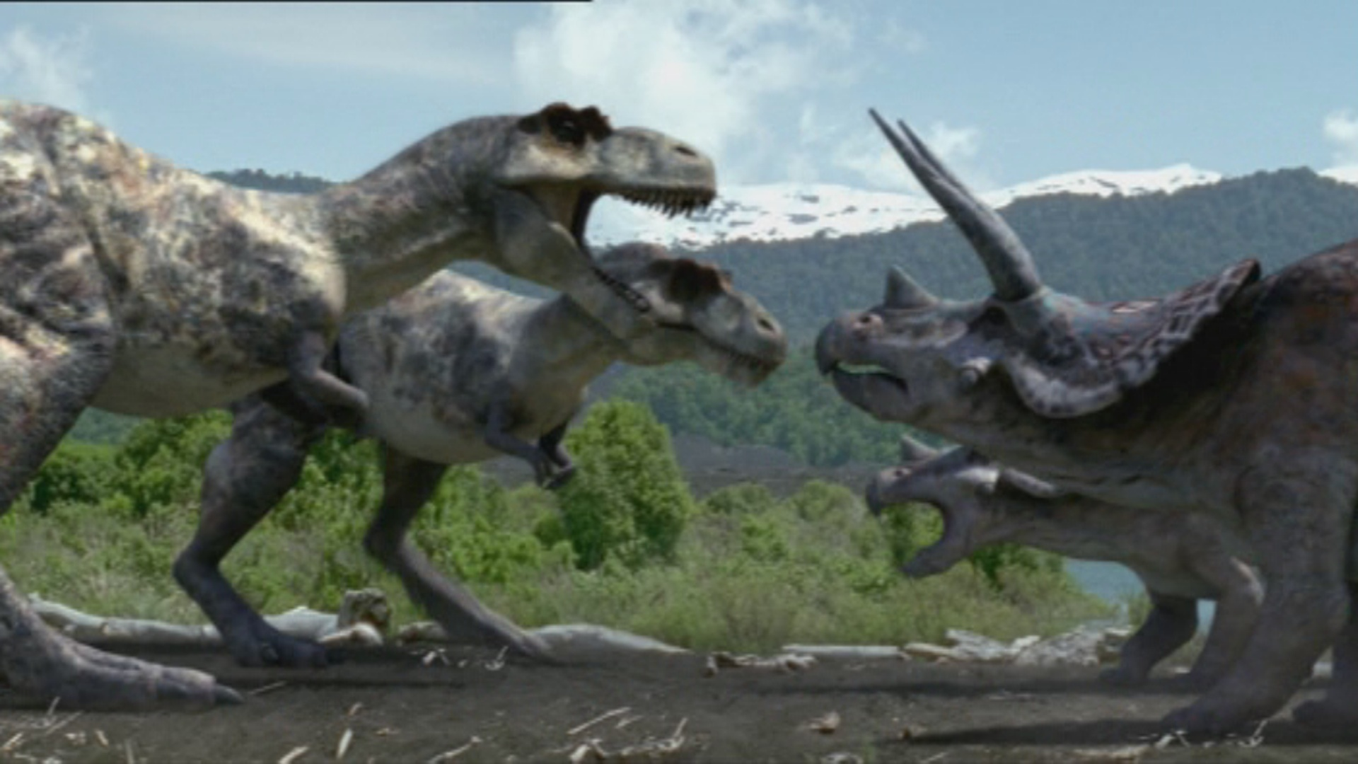 Tr vs T rex