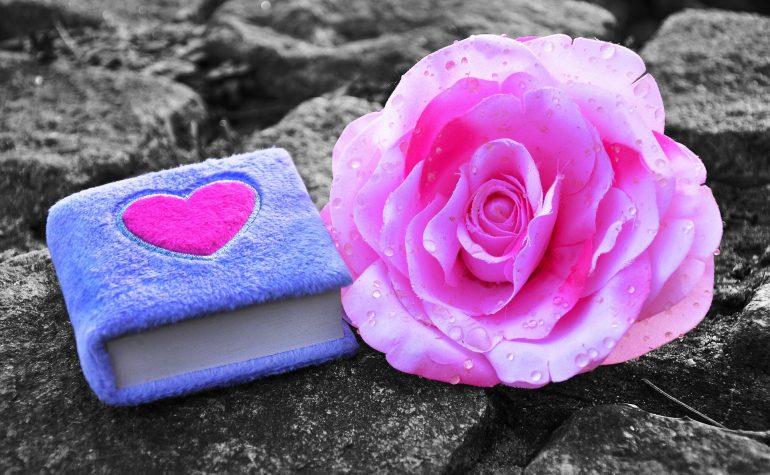 dnevnik-ruža-srce